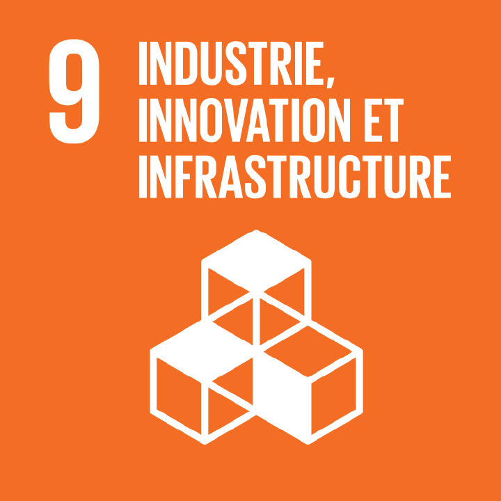 Industrie, innovation et infrastructure - Objectif 9